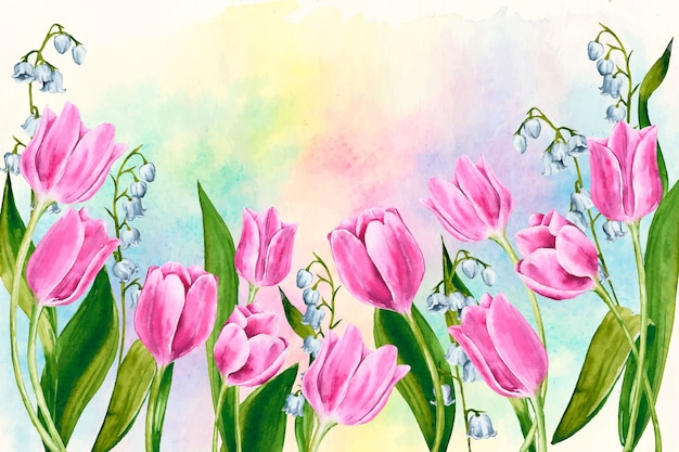 Watercolor spring background with colorful tulips Free Vector