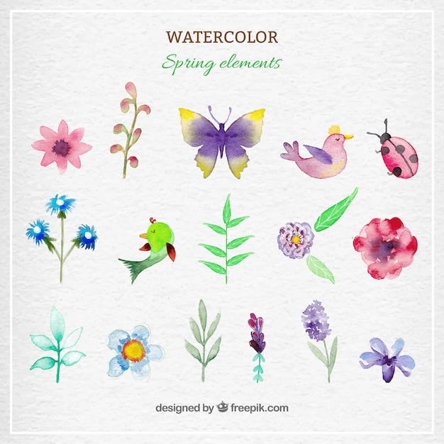 Watercolor spring elements Free Vector
