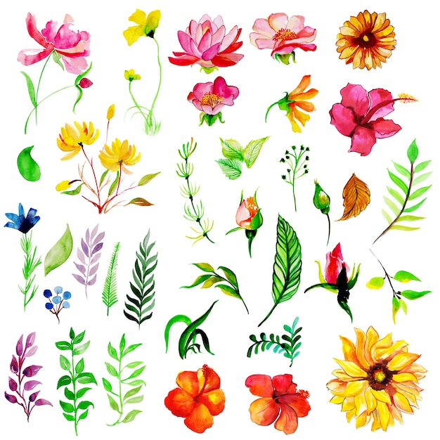 Watercolor Spring Floral and Leaves Collection Free Vector