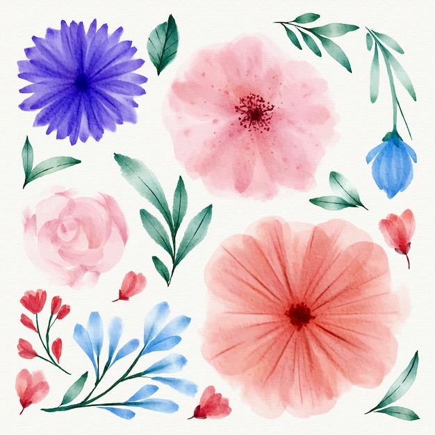 Watercolor spring flower collection Free Vector
