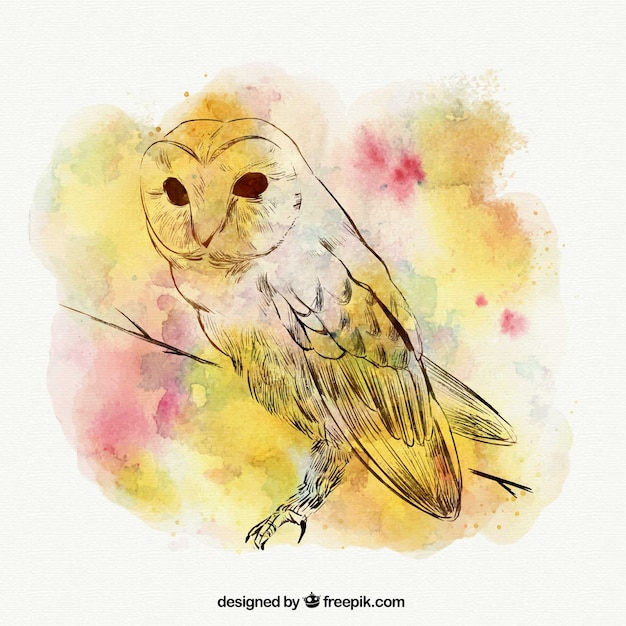 Watercolor stains background with hand drawn owl Free Vector