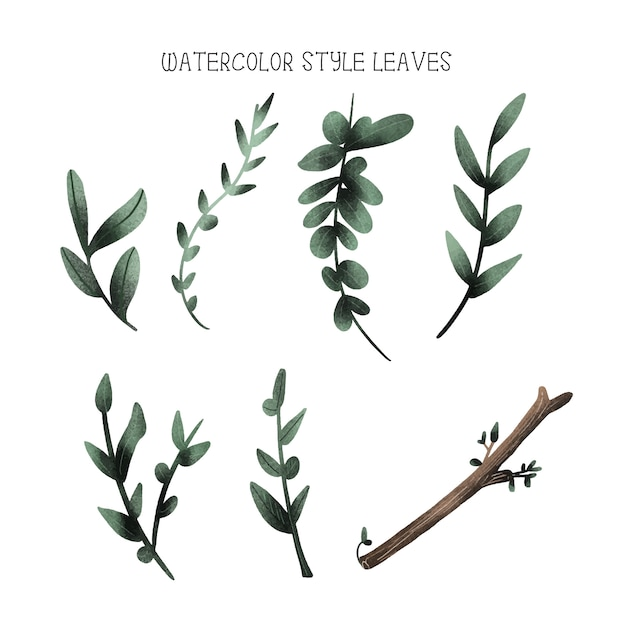 Watercolor style leaves, hand drawn collection Premium Vector