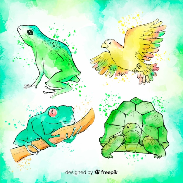 Watercolor style tropical animal collection Free Vector