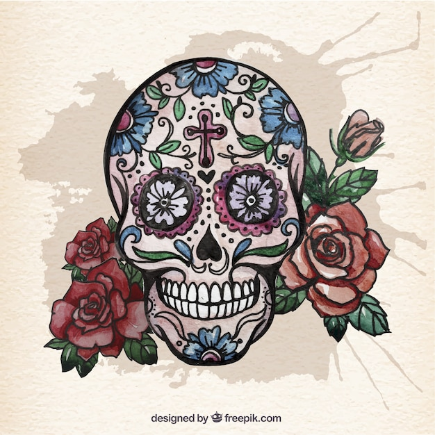 watercolor sugar skull with roses free vector