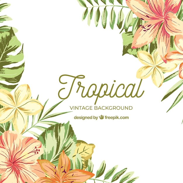 Vintage Style Tropical Bird And Flowers Background: Watercolor Tropical Background With Vintage Style Vector