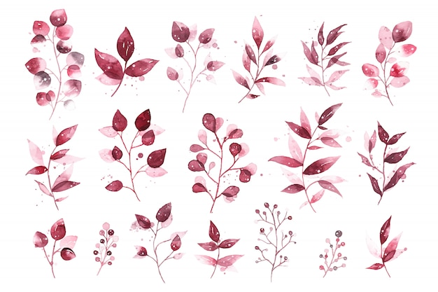 Watercolor tropical burgundy maroon leaves isolated Free Vector
