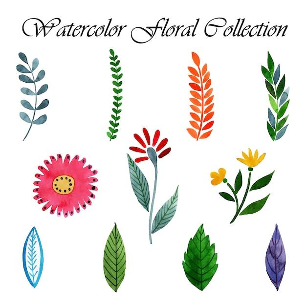 Watercolor valentine floral collection Premium Vector
