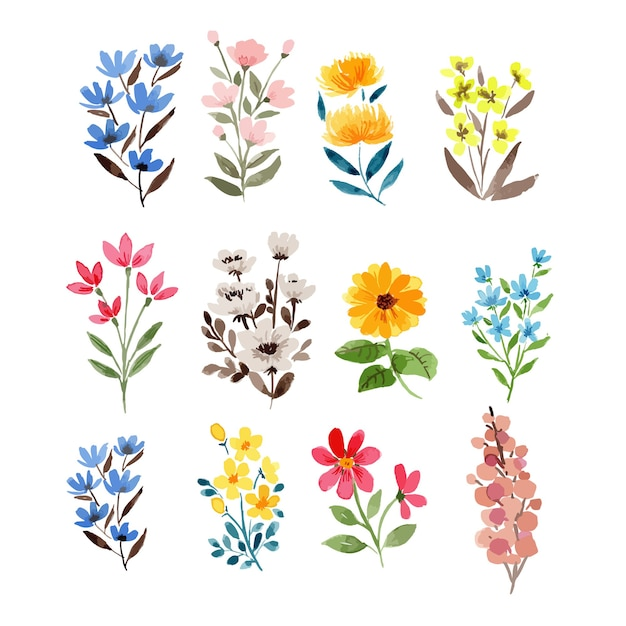 Watercolor various colorful wildflowers elements illustration clipart set Premium Vector
