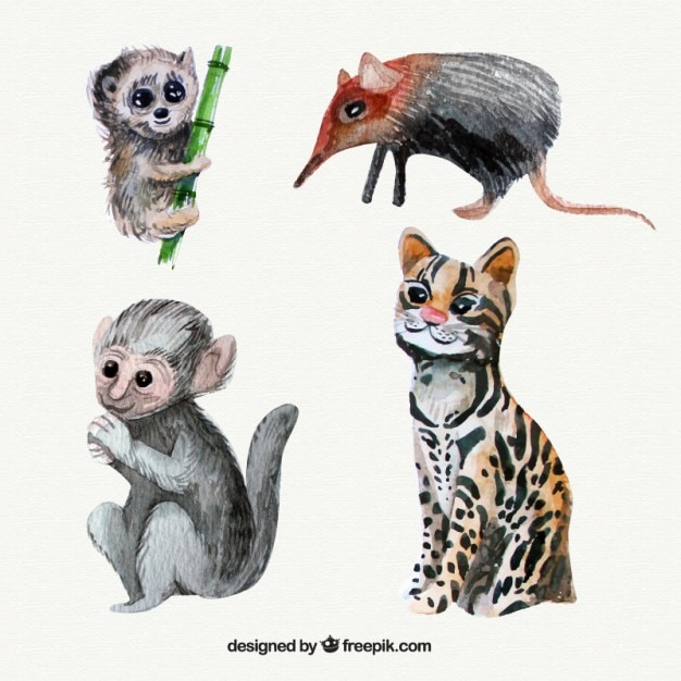 Watercolor wild animals and lovely\ monkey
