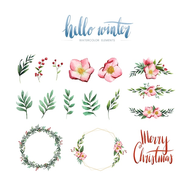 Watercolor winter bloom and elements vector Free Vector