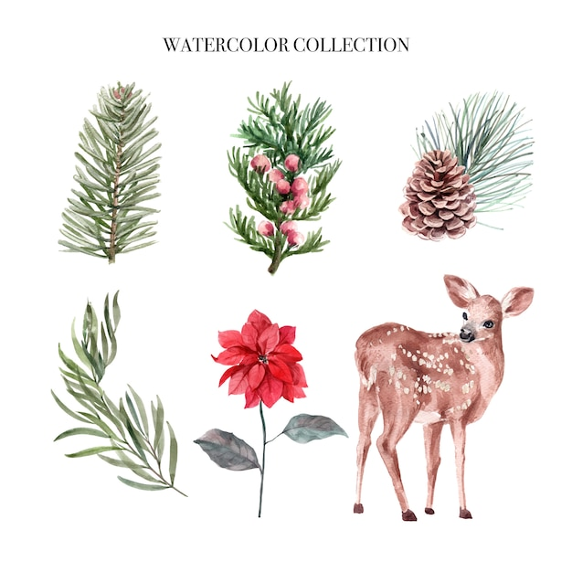 Watercolor winter decoration illustration, consisting of plants and deer. Free Vector