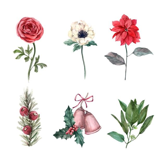 Illustrazione della decorazione di inverno dell'acquerello su bianco, consistente di vario fiore. Vettore gratuito