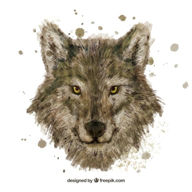 Watercolor wolf head Free Vector