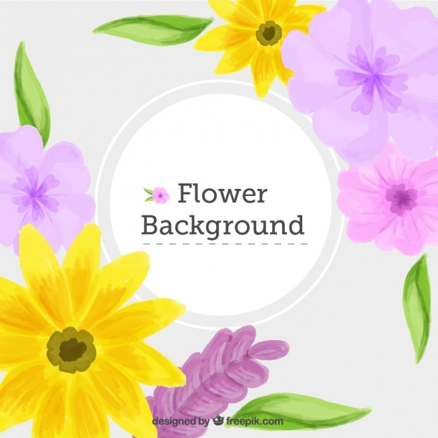 Watercolor yellow daisies and flowers\ background
