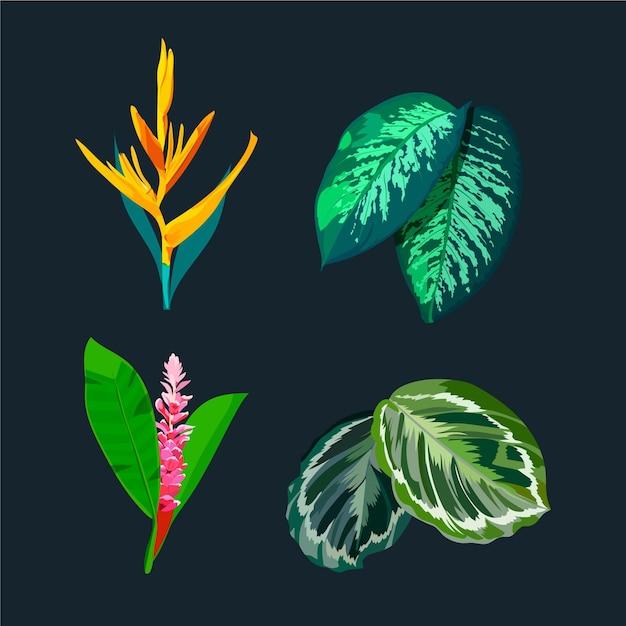 수채화 아름다운 열대 꽃과 잎 프리미엄 벡터