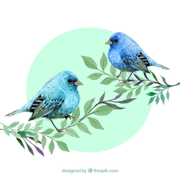Watercolour Blue Birds Vector Free Download