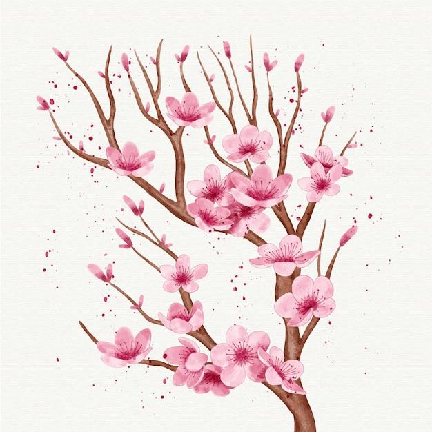 桜の花の水彩支店 無料ベクター