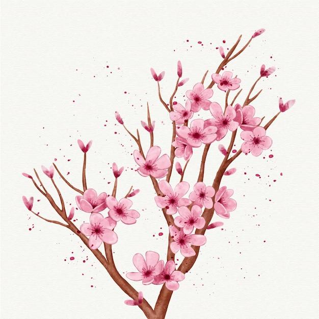 사쿠라 꽃의 수채화 지점 무료 벡터