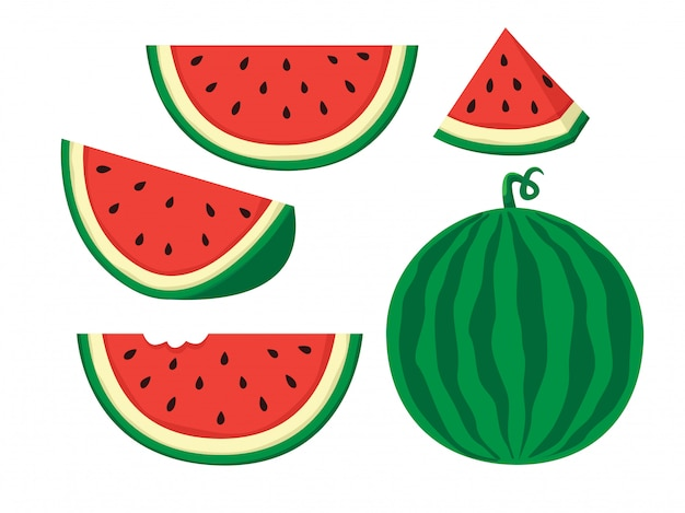 Watermelon illustration Premium Vector