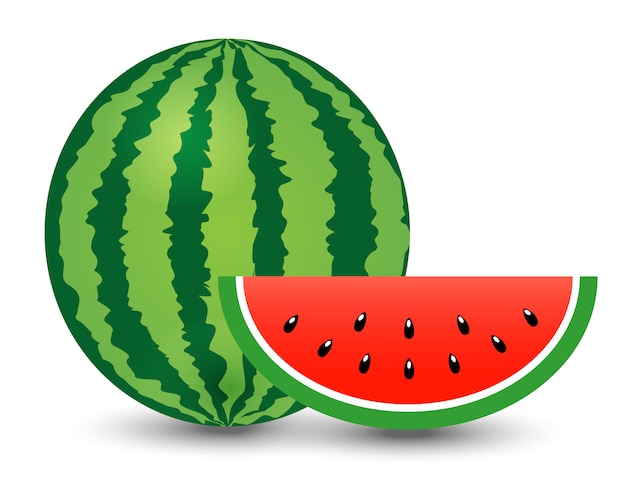 Watermelon and piece on white background Premium Vector