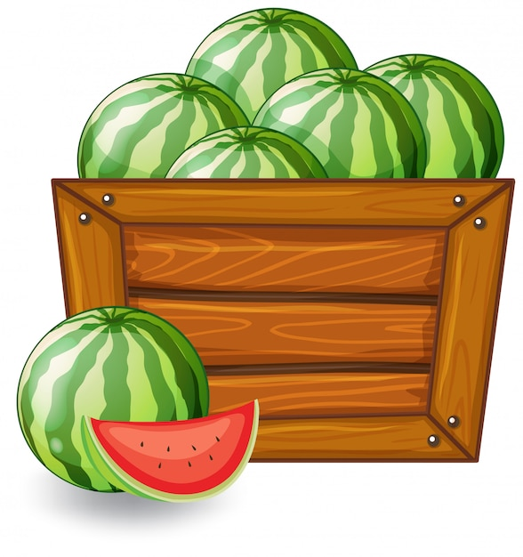 Watermelon on wooden banner Free Vector