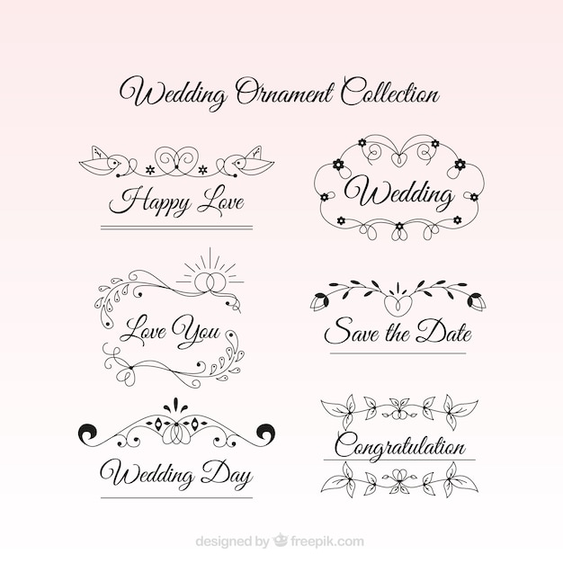 Wedding Ornaments With A Emotive Text Vector Premium