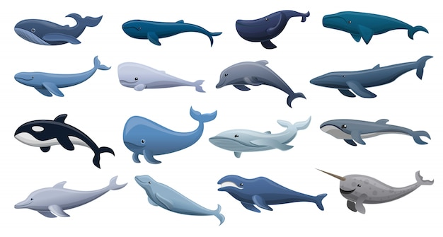 Whale icon set, cartoon style Premium Vector