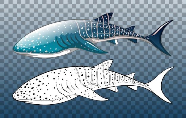 투명에 낙서가있는 고래 상어 무료 벡터