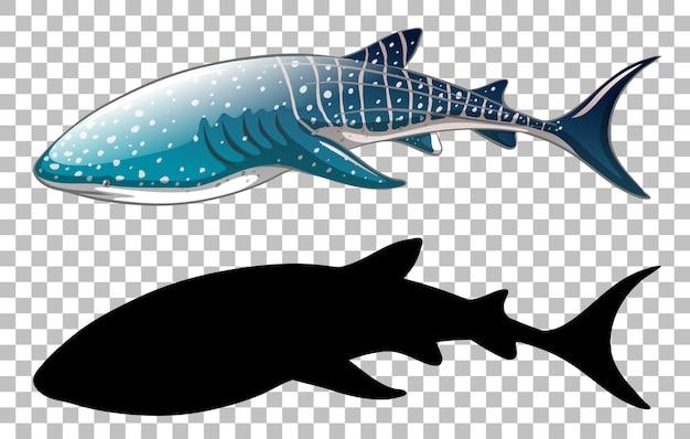 Китовая акула с ее силуэтом на прозрачном Бесплатные векторы