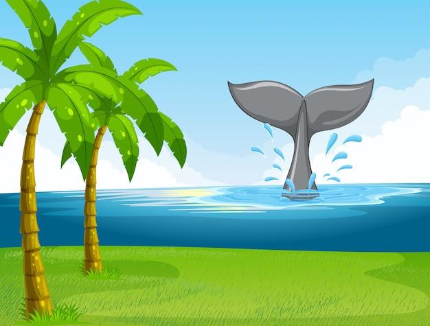 Balena nuota nell'oceano Vettore gratuito