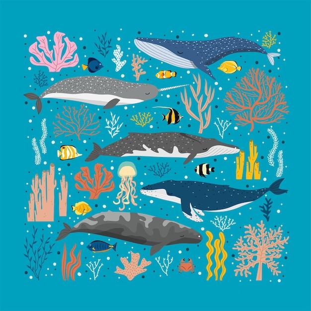 Киты и разные красочные водоросли и кораллы. красивый плакат под морем с китами Premium векторы
