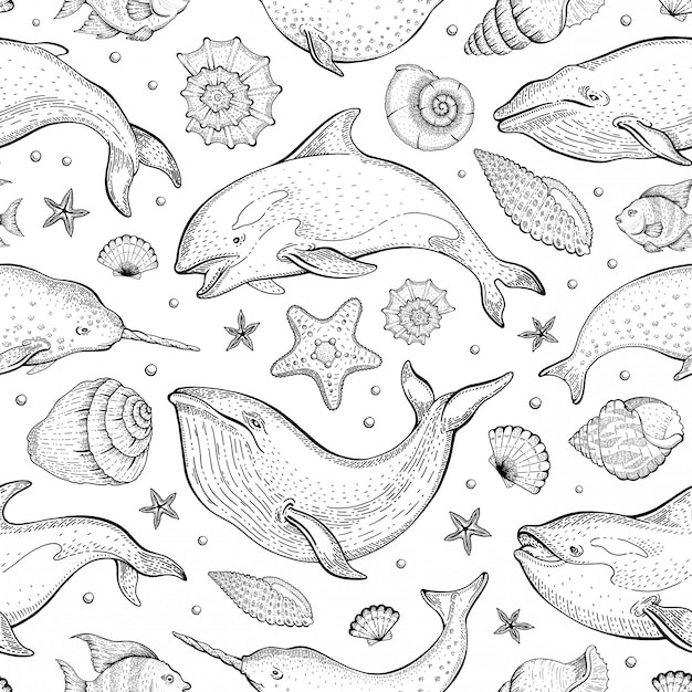 クジラの貝殻のパターン。シロナガスクジラ、イッカク、シャチのシームレスな背景。かわいい海の動物のイラスト。漫画の海の海を描きます。 Premiumベクター
