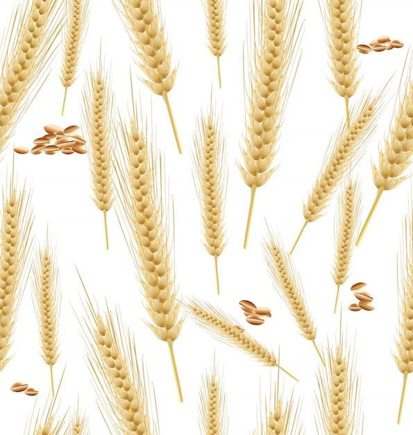 Wheat background seamless Premium Vector