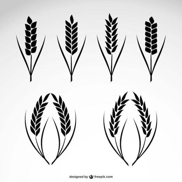 Wheat collection icons Vector | Free Download