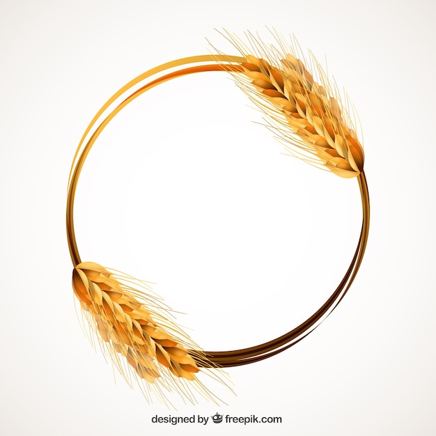 Wheat Ear Frame Vector Free Download