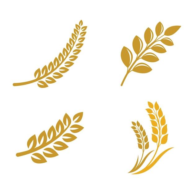 Логотипы пшеницы Premium векторы