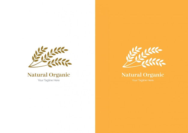 Wheat logo or set collection wheat paddy logo Premium Vector