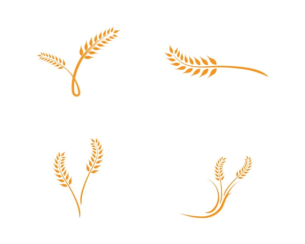 Wheat logo template Premium Vector