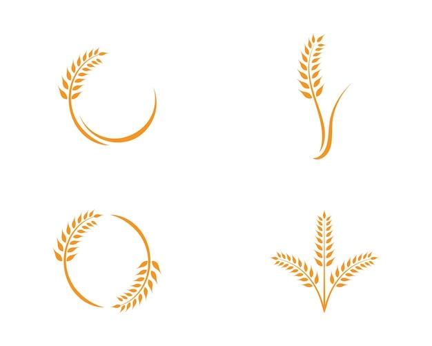 Шаблон логотипа пшеницы Premium векторы