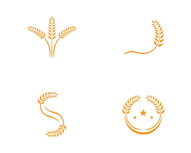 Wheat logo template Premium Vector