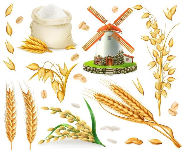 밀, 쌀, 귀리, 보리, 밀가루, 밀, 곡물. 3d 현실 벡터 요소 집합 프리미엄 벡터