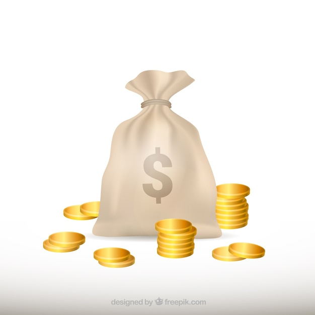 White background of money bag