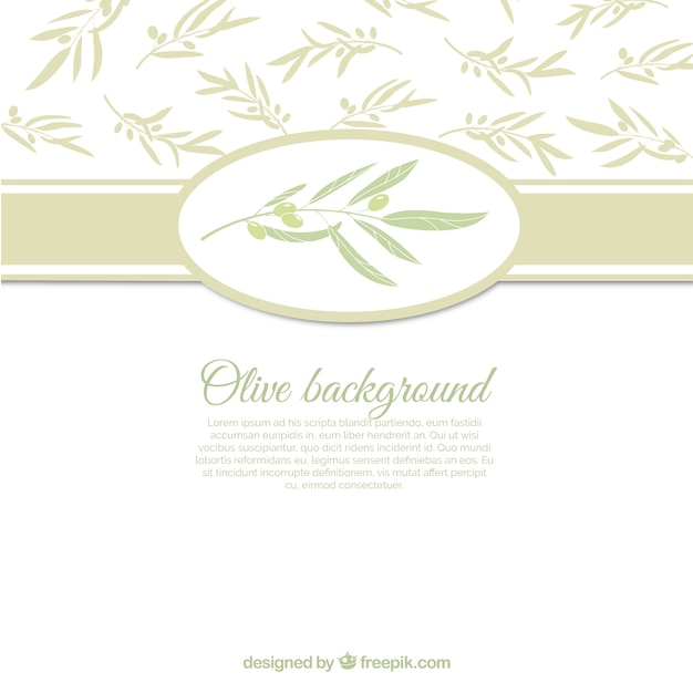 White background with olive leaves Free Vector
