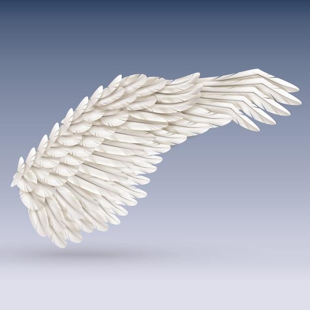 白い鳥の羽 無料ベクター