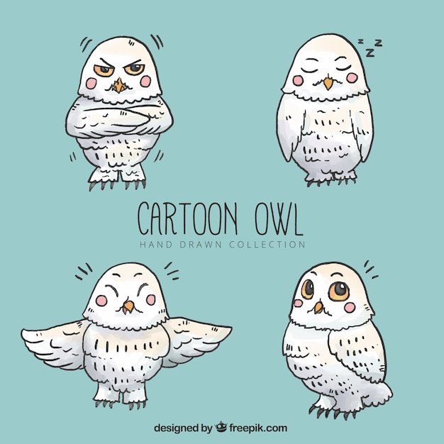 White cartoon owl pack
