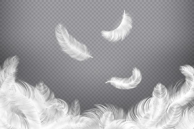 Белое перо . крупным планом птица или ангел перья. падающие невесомые перья. иллюстрация мечты Premium векторы