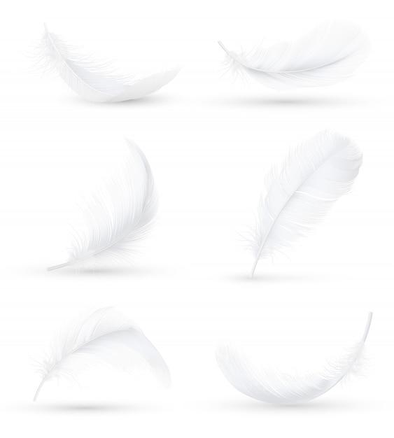 白い羽の現実的なセット 無料ベクター