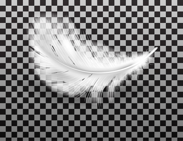 White fluffy feather with shadow realistic Free Vector
