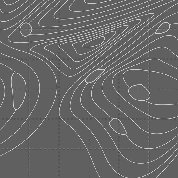 White and gray abstract contour line map Free Vector