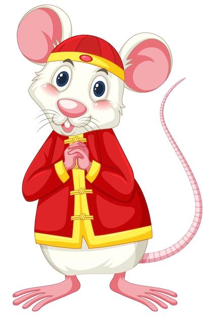 White rat wearing chinese costume Premium Vector